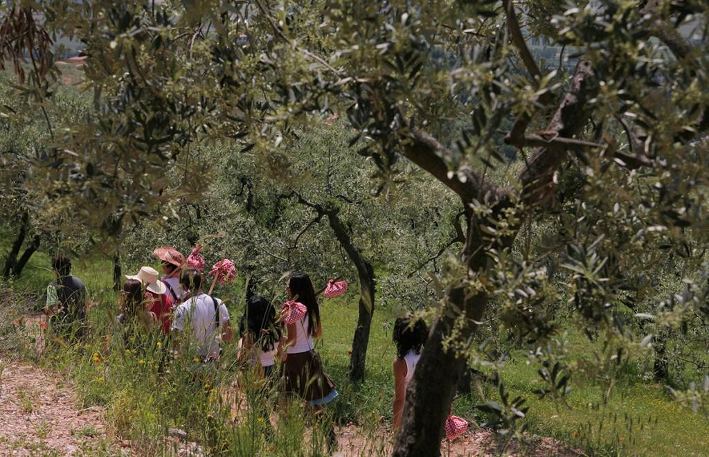 Piknik Trevi Umbria Italia