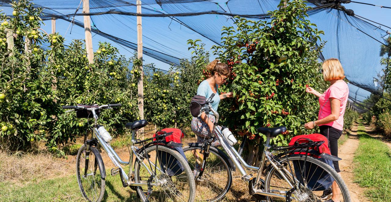 Sykkel Catalonia Spania