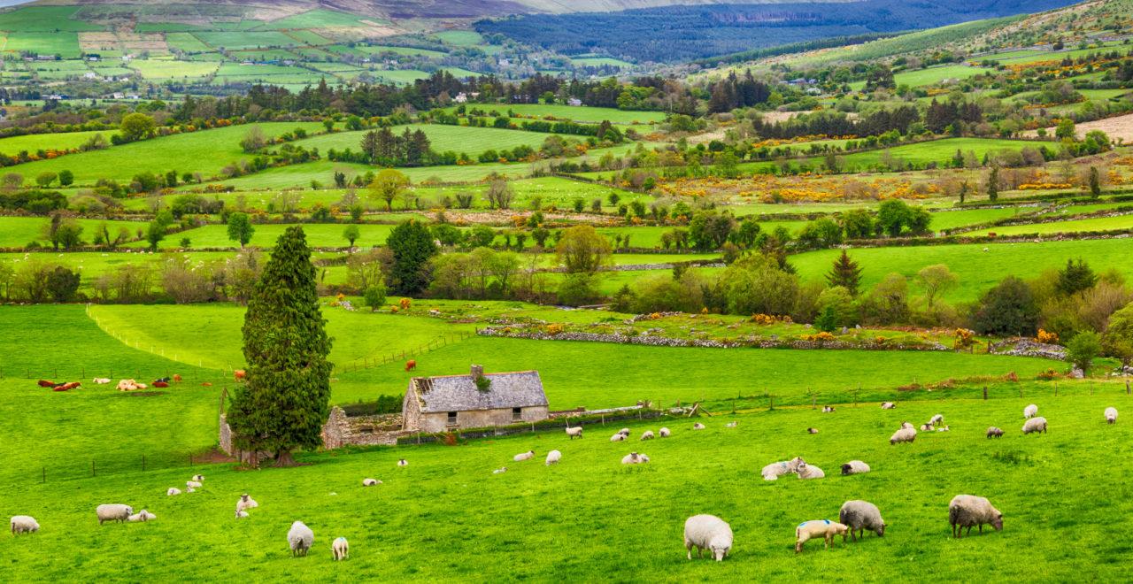Ireland, Nord-Irland, landskap, landsbygd