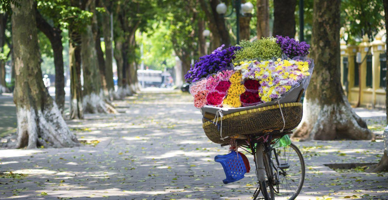 sykkel blomster vietnam
