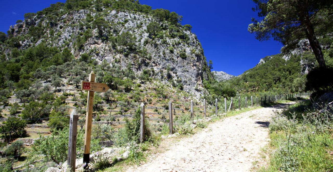 Vandring Mallorca Spania