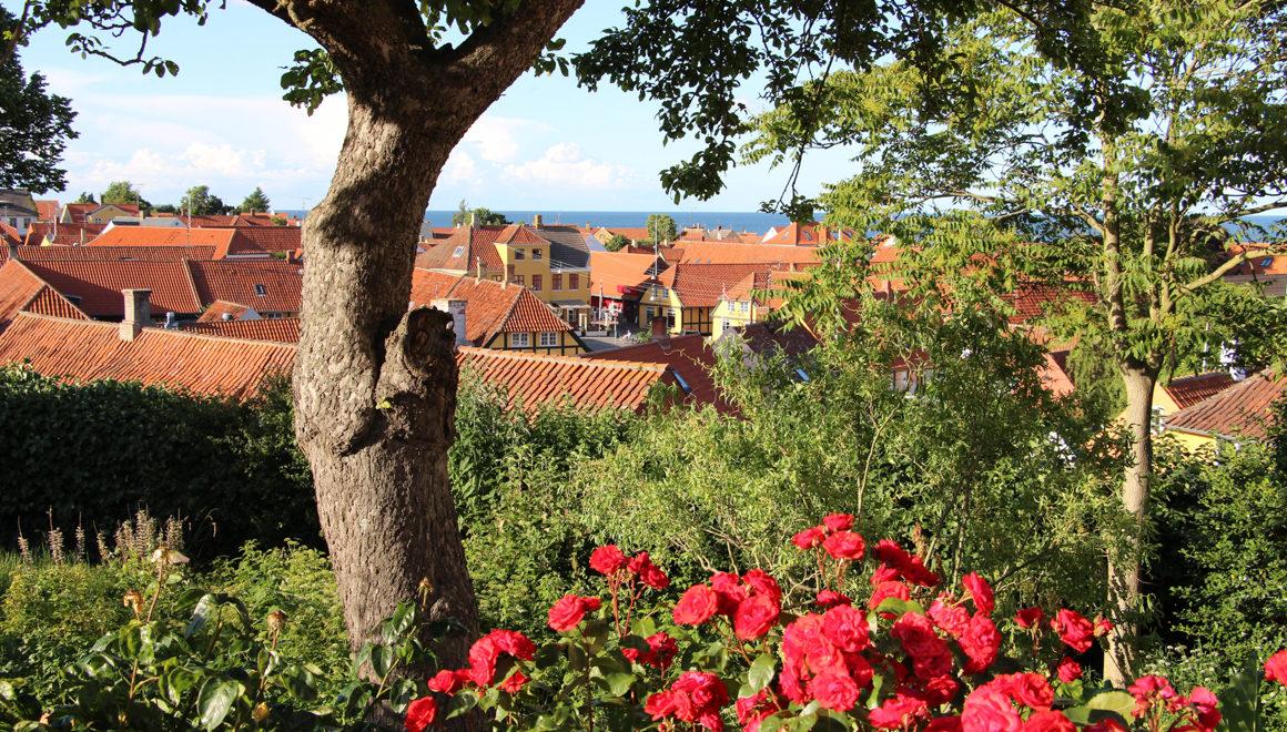 Bilde fra Svaneke, Bornholm med røde blomster i forgrunnen