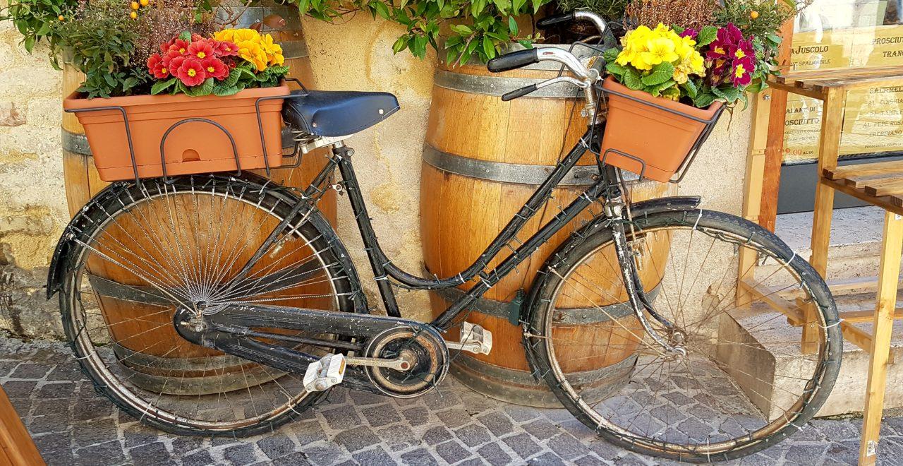 Italia, Umbria, Montefalco, Trevi, sykkel, blomst