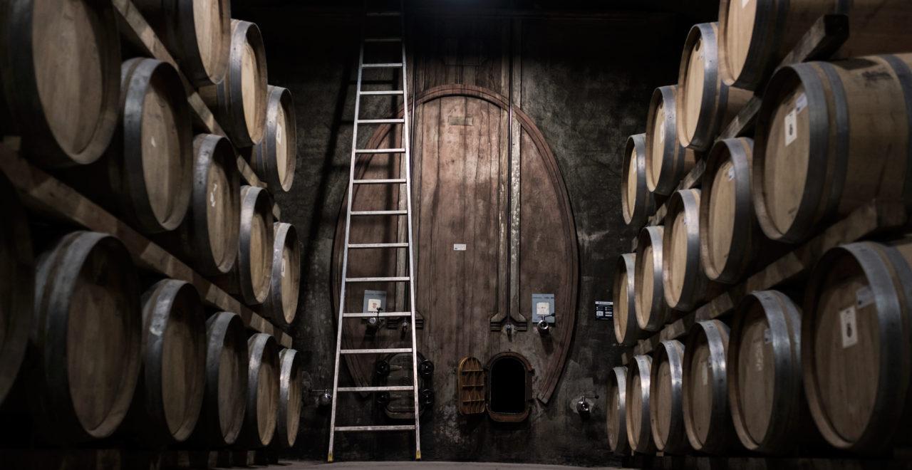 Italia, Umbria, vingård, Scacciadiavoli, vintønner