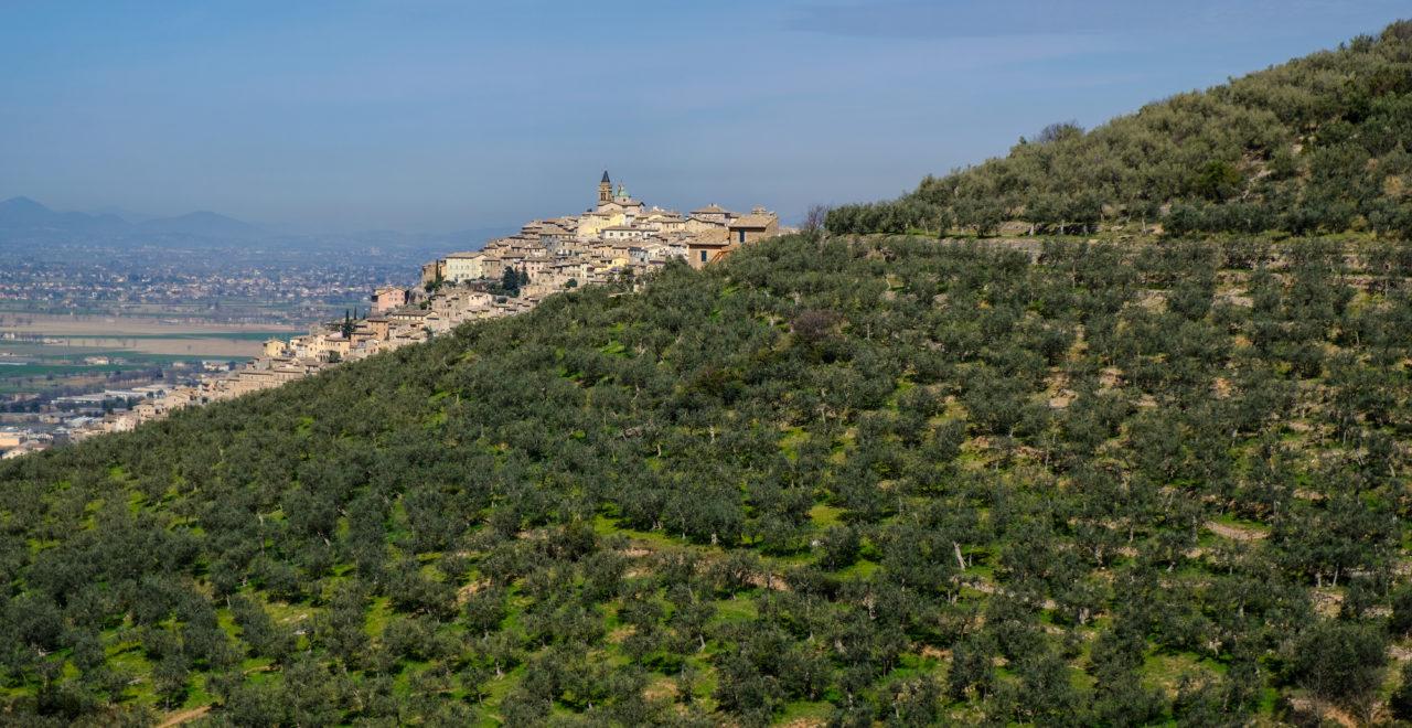 Italia, Umbria, Trevi, vandring