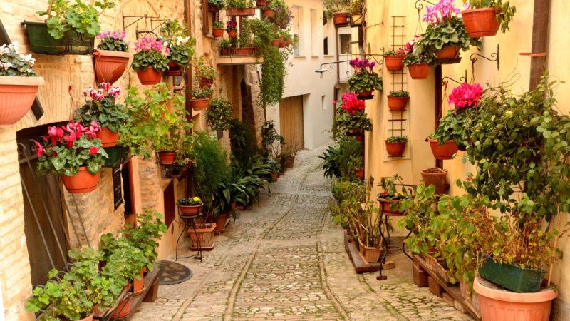 Spello Umbria Italia