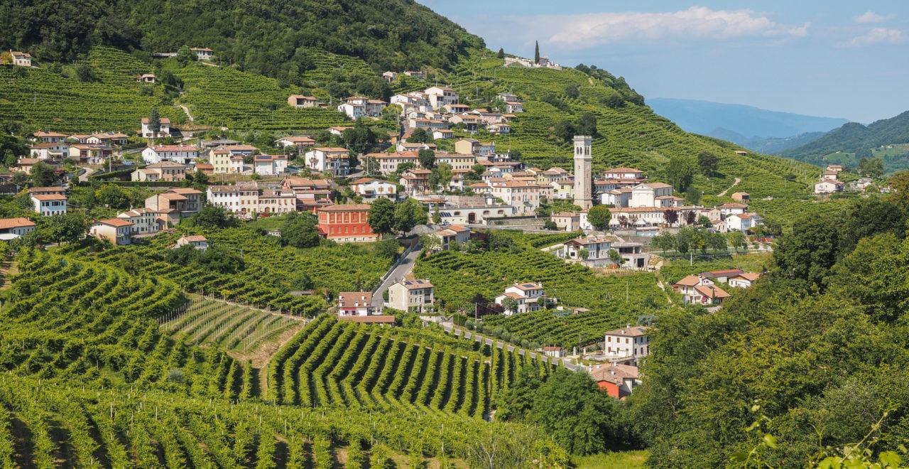 Valdobbiadene Prosecco Veneto Italia
