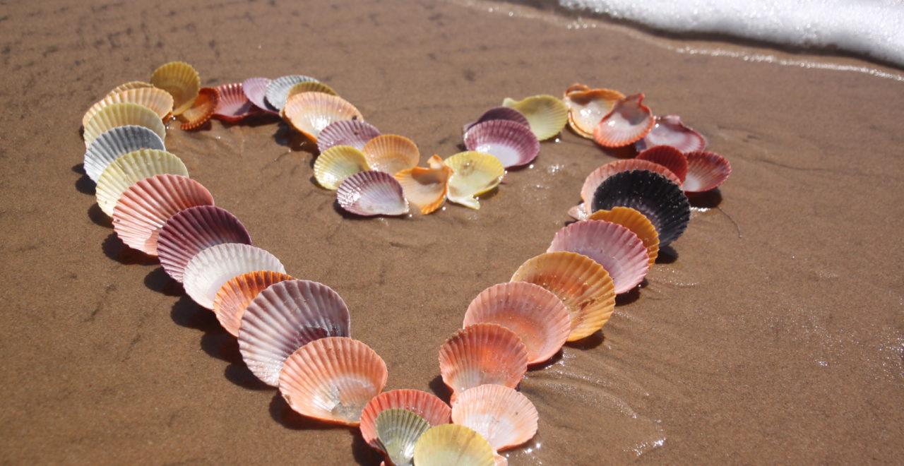 Vietnam hjerte skjell strand