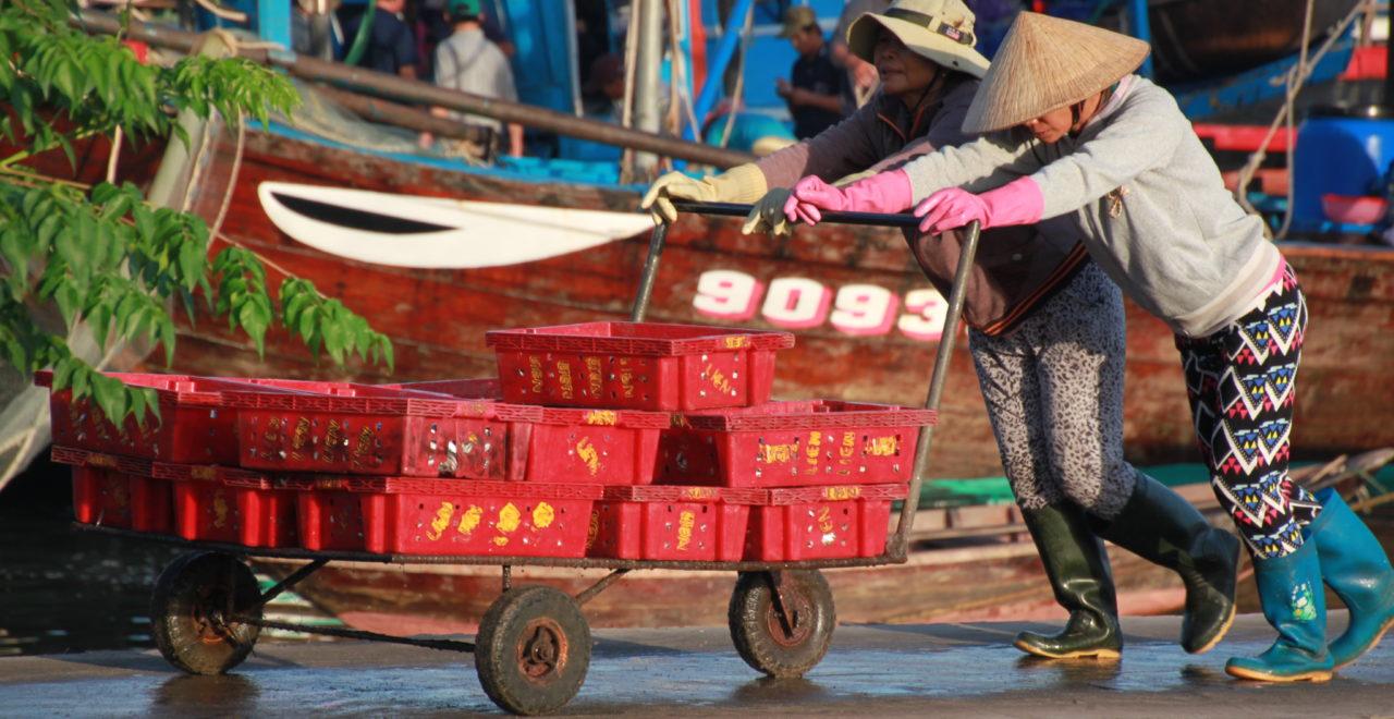 Vietnam Hoi An fototur