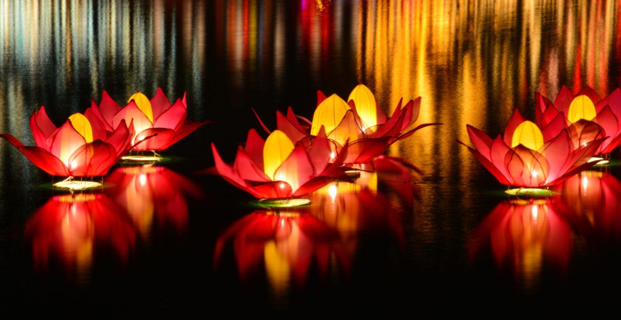 Colombo, Sri Lanka, Vesak, lys, lykt
