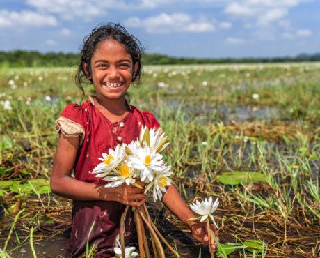 Sri Lanka, blomster, jente, lotus