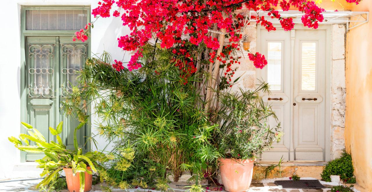 Paros, Kykladene, dør, blomster