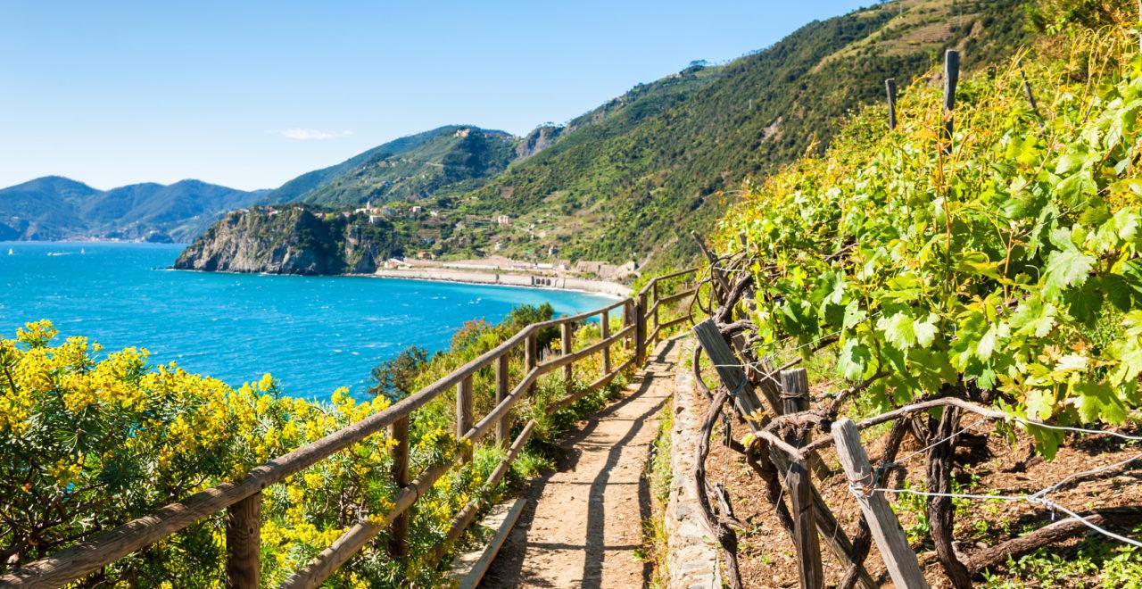 Cinque Terre, Liguria, vandring, Italia