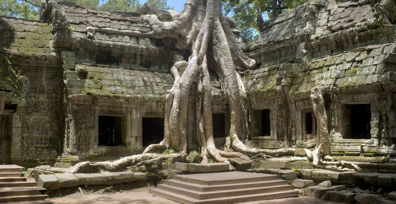 Ta Prohm Temple, tempel, Angkor, Siem Reap, Kambodsja