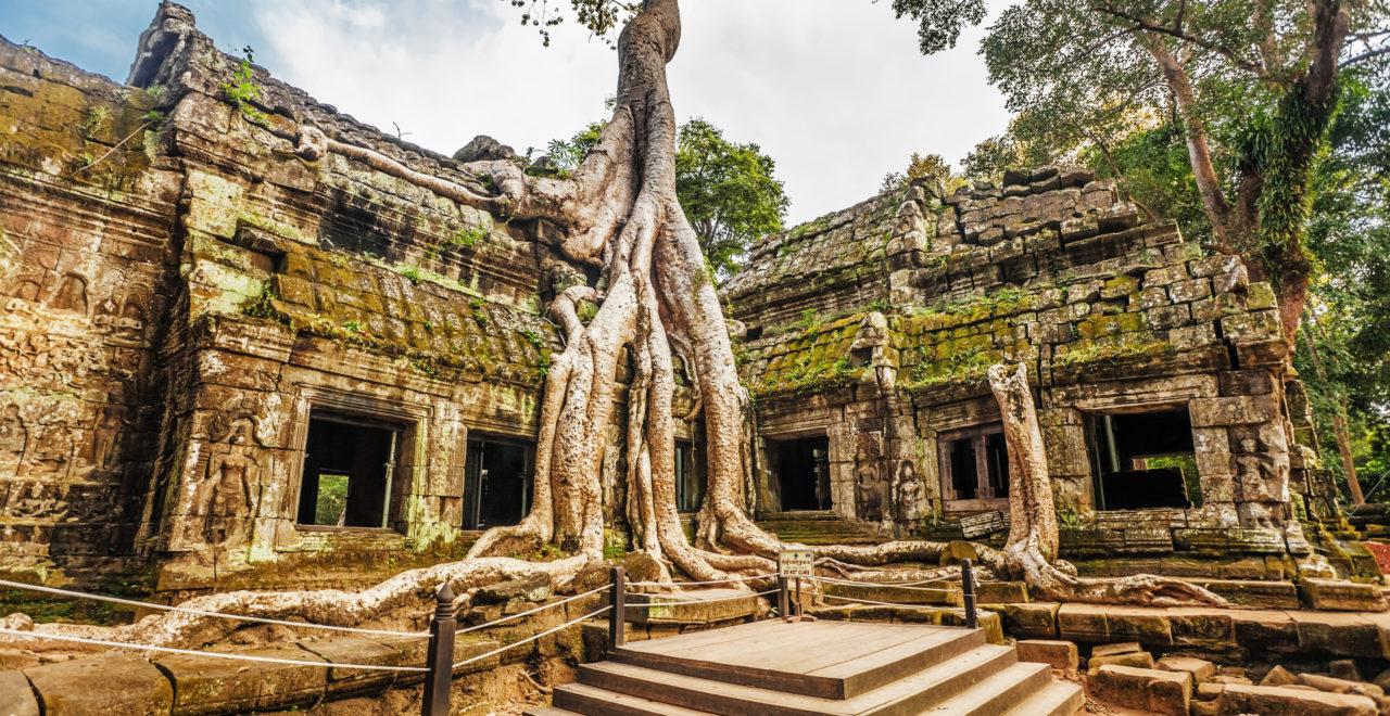 Ta Prohm Temple, Angkor Wat, Kambodsja