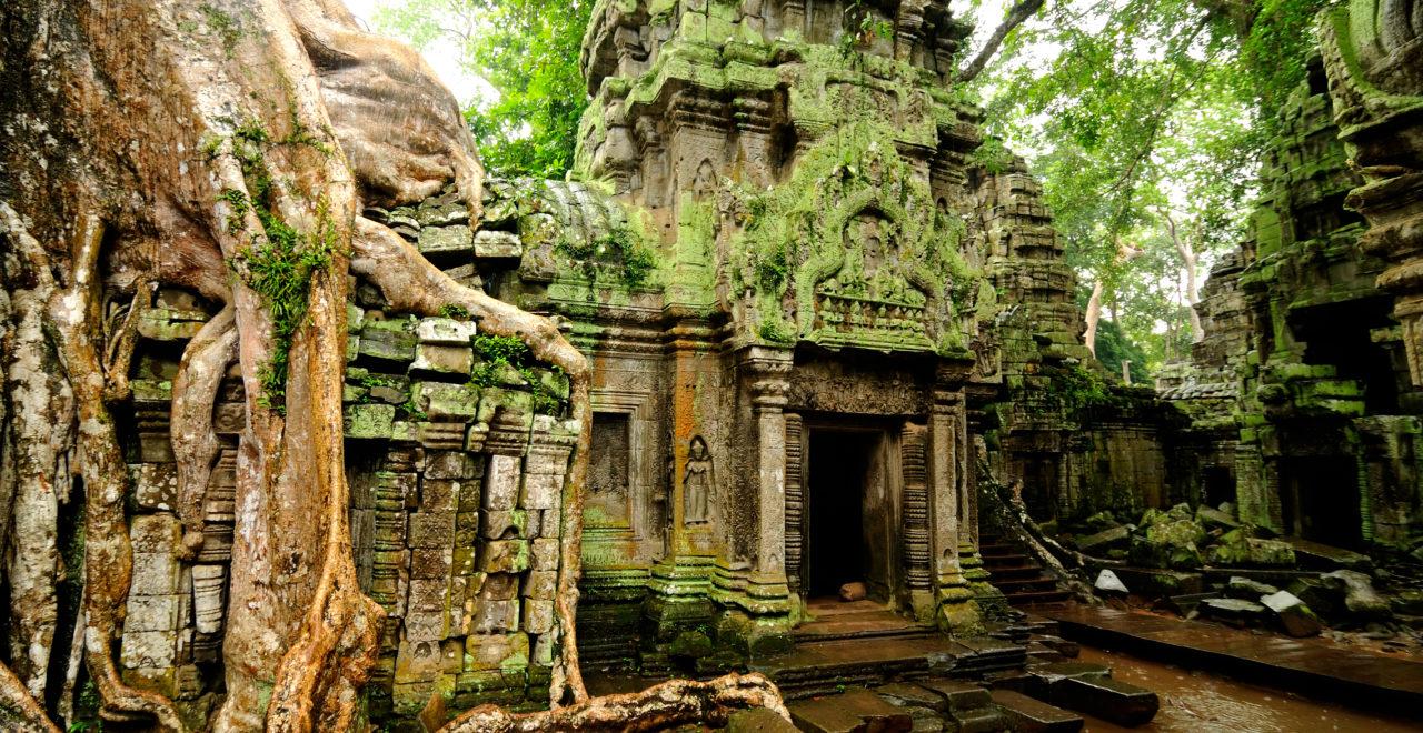Angkor Wat - Ta Prohm temple, Kambodsja