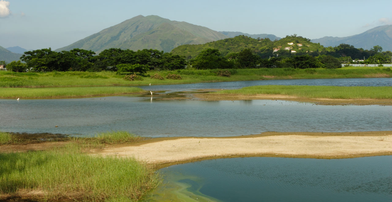Hong Kong Wetland, våtmark, Kina