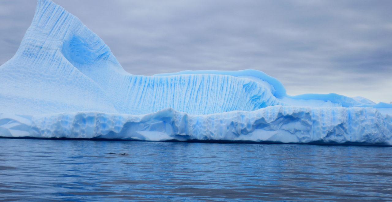 Antarktis, Astrids bilder, Hurtigruten, Midnatsol, Carpe Diem, isfjell