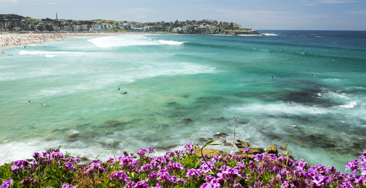 Australia, Sydney, Bondi beach