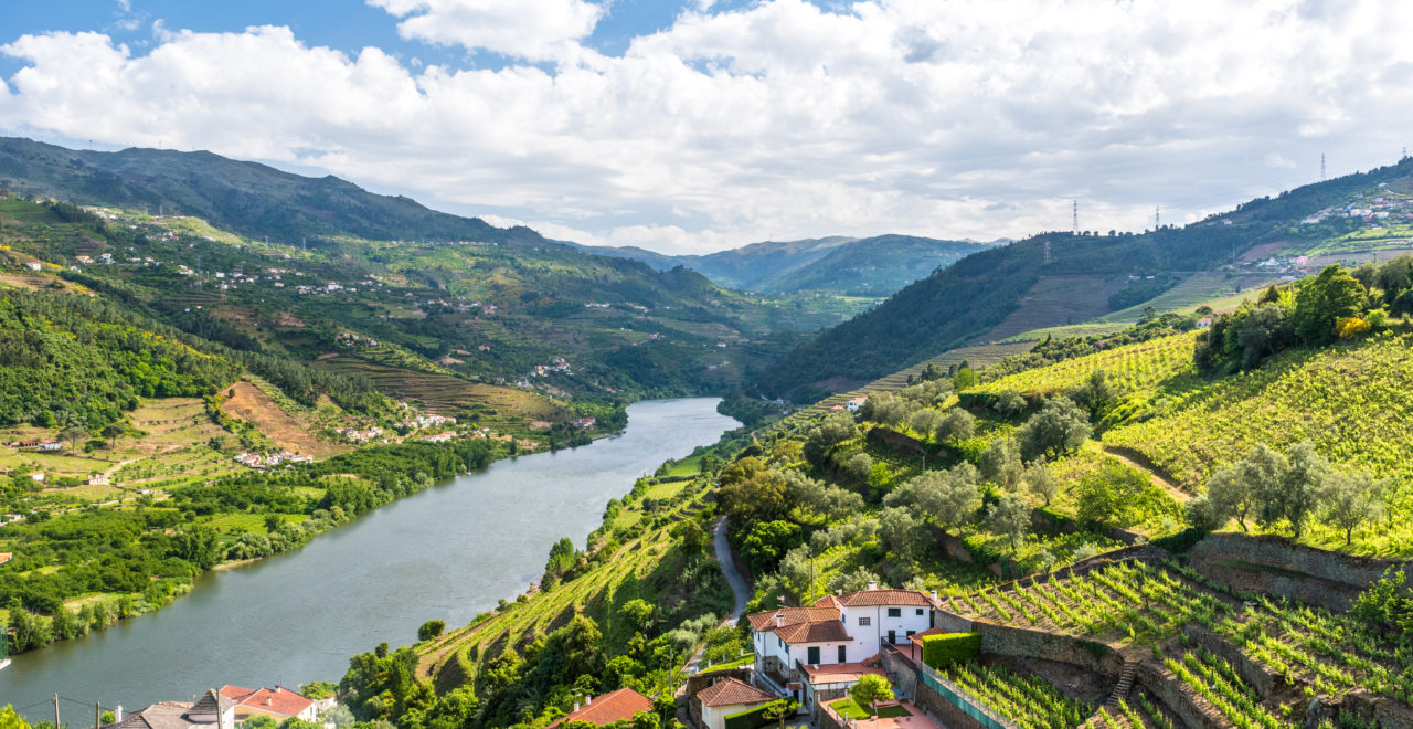 Portugal, Regua, Dourodalen, Douro