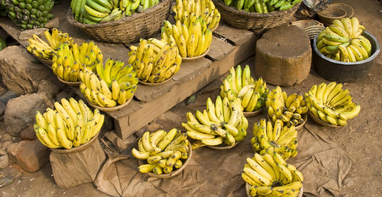 Banener på marked i Uganda